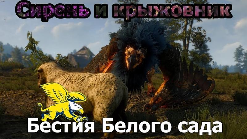 Ведьмак 3 Дикая охота Сирень и Крыжовник Бестия Белого сада 4K 2