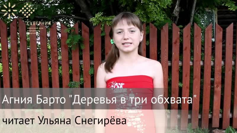 Русские рифмы Стихотворение Агнии Барто Деревья в три обхвата читает Ульяна Снегирева