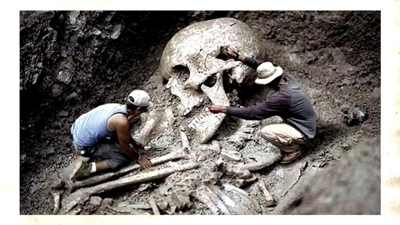 Гиганты прошлого Кремниевая форма жизни на Земле