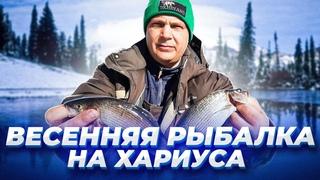 Весенняя РЫБАЛКА на Таежных реках / СКОРО КОНКУРС / Рыбалка на хариуса