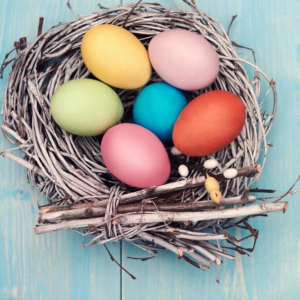 Натуральные красители для пасхальных яиц!