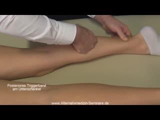 FDM терапия. Примеры дисторсий и их лечение