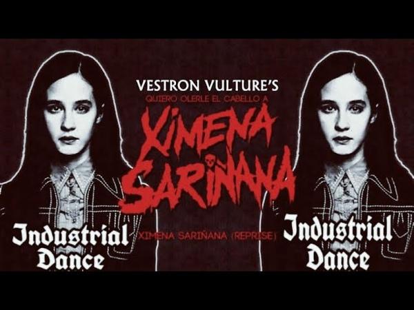 ☣️Industrial Dance☣️ Vestron Vulture (Quiero olerle el cabello a Ximena Sariñana)☣️ D.Horror ☣️