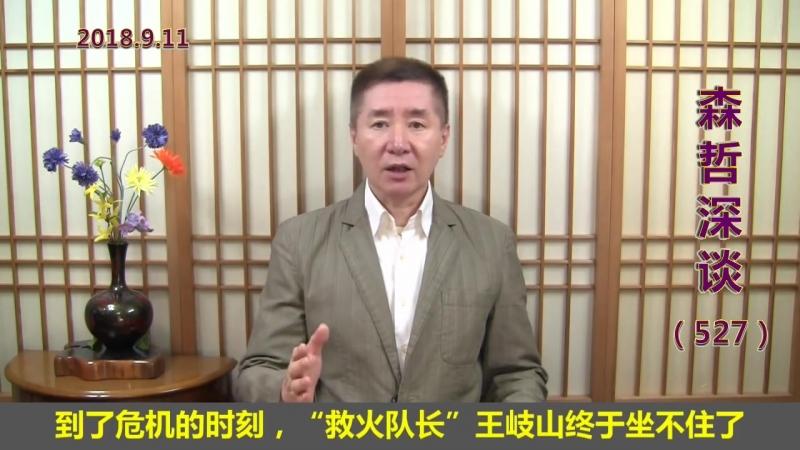 """紧急救火:王岐山终于坐不住了,要当贸易战的 救火队长"""" 2018 9 11"""