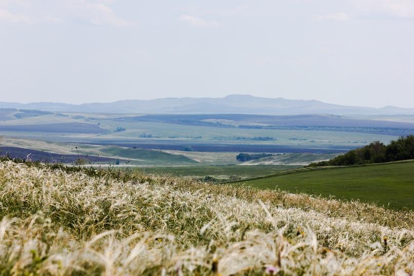 Экспедиционная оценка эффективности землепользования в Оренбуржье, изображение №1