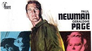 DULCE PAJARO DE JUVENTUD (1962) de Richard Brooks con Paul Newman, Geraldine Page, Ed Begley, Shirley Knight by Refasi