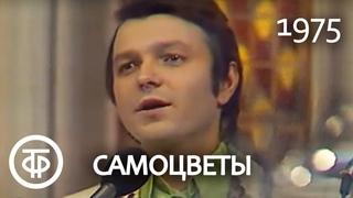 """Ансамбль """"Самоцветы"""" """"Там, за облаками"""" Песня Марка Фрадкина на стихи Роберта Рождественского (1975)"""