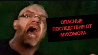 Почему ОПАСНО принимать МУХОМОР? Последствия... #1 - Владимир Епифанцев