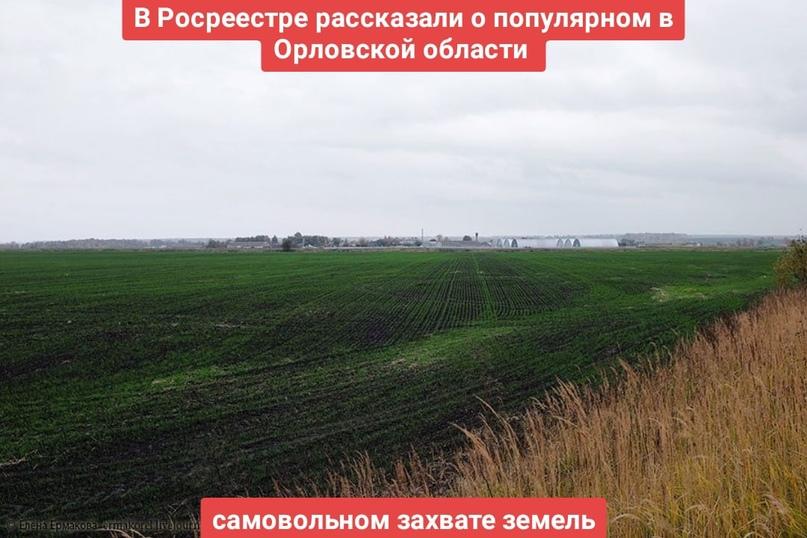 В Росреестре рассказали о популярном в Орловской области самовольном захвате земель