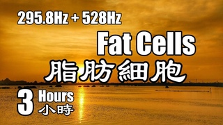 【器官共振】脂肪細胞 頻率 () + DNA 修復頻率 (528Hz) 頌缽療癒音樂 脈輪淨化 活化
