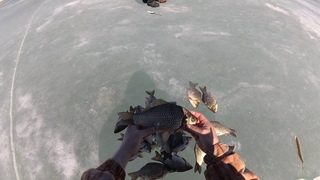 Рыбалка на карася Последний лед 2021 Утащил удочку..