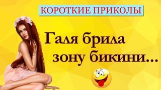 Сборник Приколов! Короткие Приколы! Анекдоты! Смех! Юмор! Позитив!