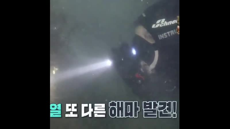 Chanyeol show 'law of the jungle'