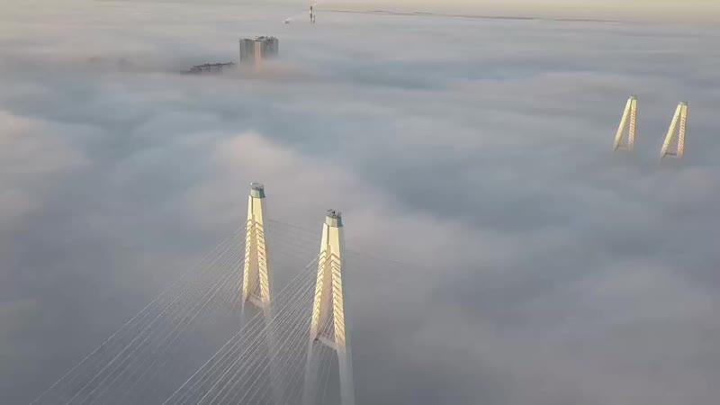 Мост Обуховской Обороны в Санкт Петербурге 1080 X 1920 60fps mp4
