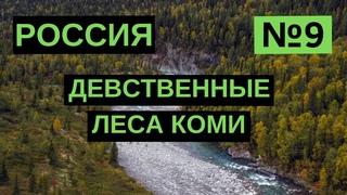 9. Девственные леса Коми. Россия