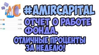 Отчет о работе в фонде #AmirCapital. Отличные проценты за неделю!
