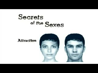 Secret of the Sexes   BBC Documentary   Episode 2/3. Attraction