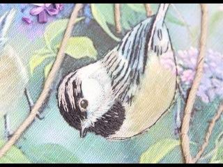 [Курс Синички] Урок 12. Как Выделить Глаз Птицы.