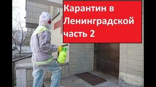 Карантин в станице Ленинградской №2. ВАЖНО! Конечная информация по штрафам. 18+