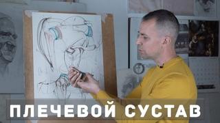 Плечевой сустав - А. Рыжкин