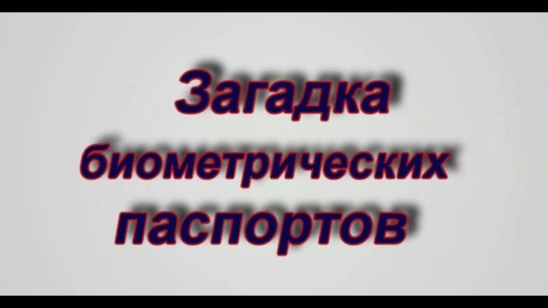 Павел Карелин о биометрических паспортах
