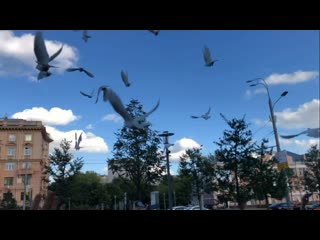 Honoring Michael Jackson. Releasing the white doves for MJ. August 29, 2020. Moscow, Russia