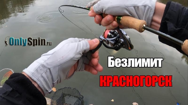 Безлимит Красногорск Обещали сломать нос из за места на водоеме Ловля на резину OnlySpin