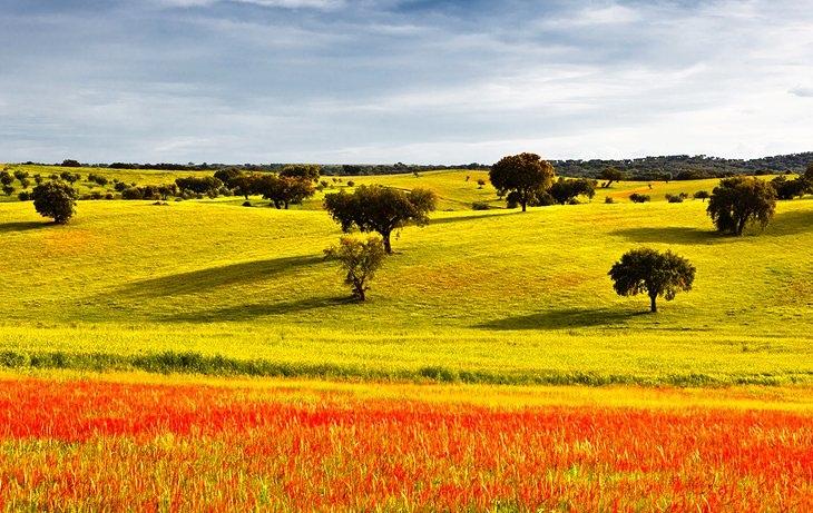 Что стоит посетить в Португалии, изображение №3