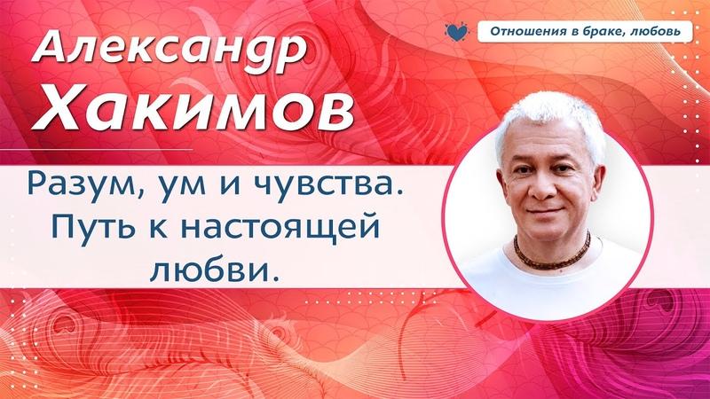 Разум ум и чувства Путь к настоящей любви Александр Хакимов
