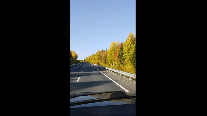 Дорога в Пермский край золотая осень