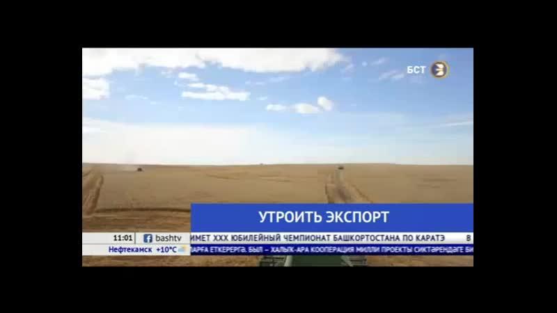 Экспорт сельхозпродукции Башкирии планируют увеличить до 230 млн рублей