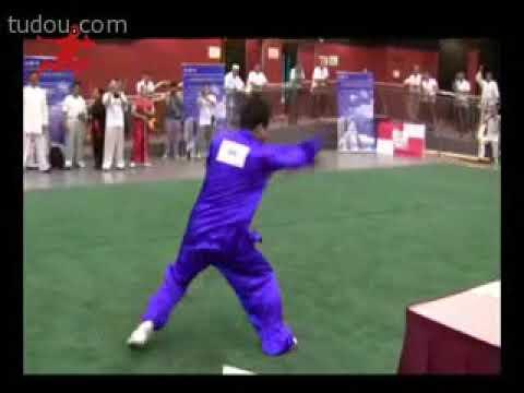 Всемирный конкурс традиционных китайских боевых искусств Фаньцзицюань 世界中华国术大赛:翻子拳