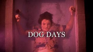 Tom Hannay - 2021 - Dog Days (Music Video)