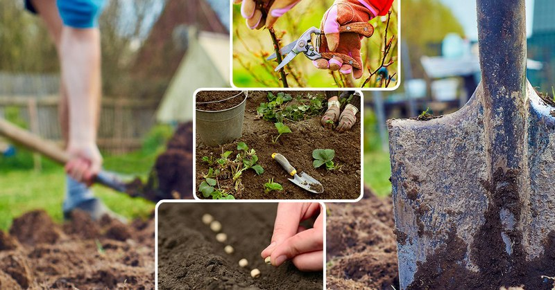 Картинки о работе в огороде, открыток