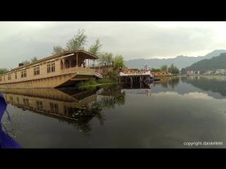 Раннее утро Кашмир Индия - Озеро Дал - Сринагар - Шикара Лодка