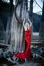 Личный фотоальбом Diana Volkova