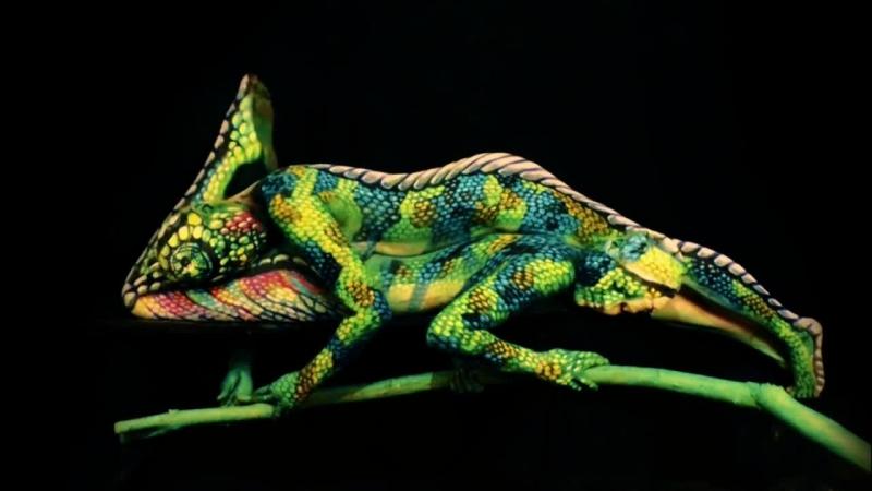 Chamelion Impressive creature