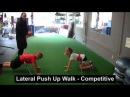 Sports Performance Training - Female Youth on VertiMax 4 of 4