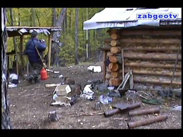 Медведь разграбил зимовьё Где люди