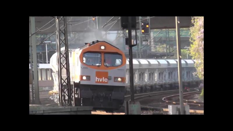 Blue Tiger Br250 der HVLE und HGK Class 66 ca 7000PS spucken Diesel