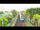 [HD] The Southbound Through Train Z815 (GuangZhou to Kowloon) SS8 0192 25T at Fanling