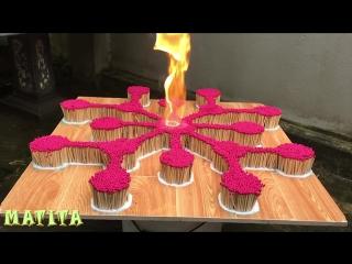 8000 спичек цепная реакция ● красный цветок ● огонь домино