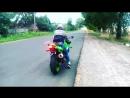 Kawasaki ninja zx9r - Лягушонок