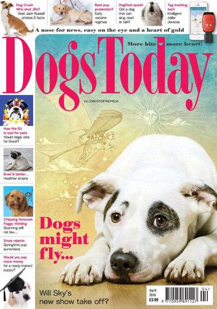 Dogs Today - April 2016 vk.com