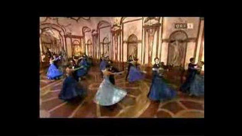 Famous Waltz Blue Danube Strauss Silvester 2008