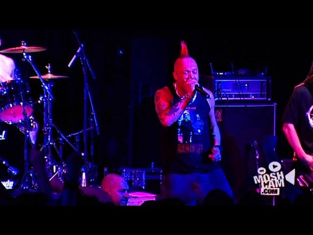The Exploited Alternative Live in Sydney Moshcam