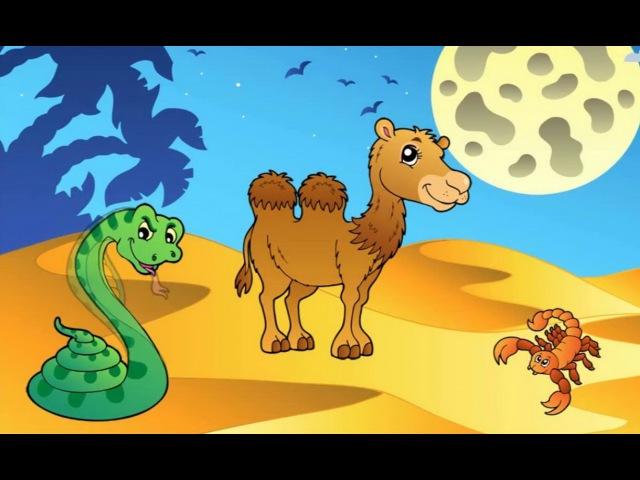 Умный верблюд и археолог египетских пирамид. Короткометражный мультфильм от студии PIXAR 2016