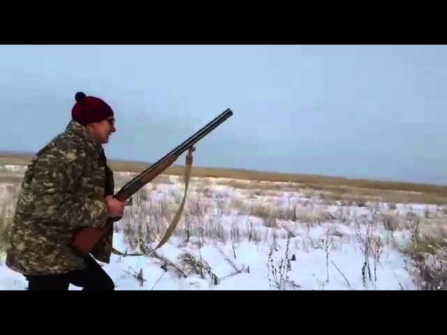 Охота на зайца 2015*2 ВКО.