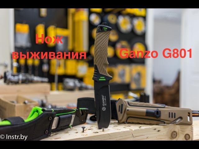 Нож выживания Ganzo G801 обзор