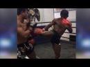 Buakaw Banchamek Thai Muay Thai Training 24 10 2016 In Thailand Banchamek Gym Bangkok buakaw banchamek thai muay thai trai
